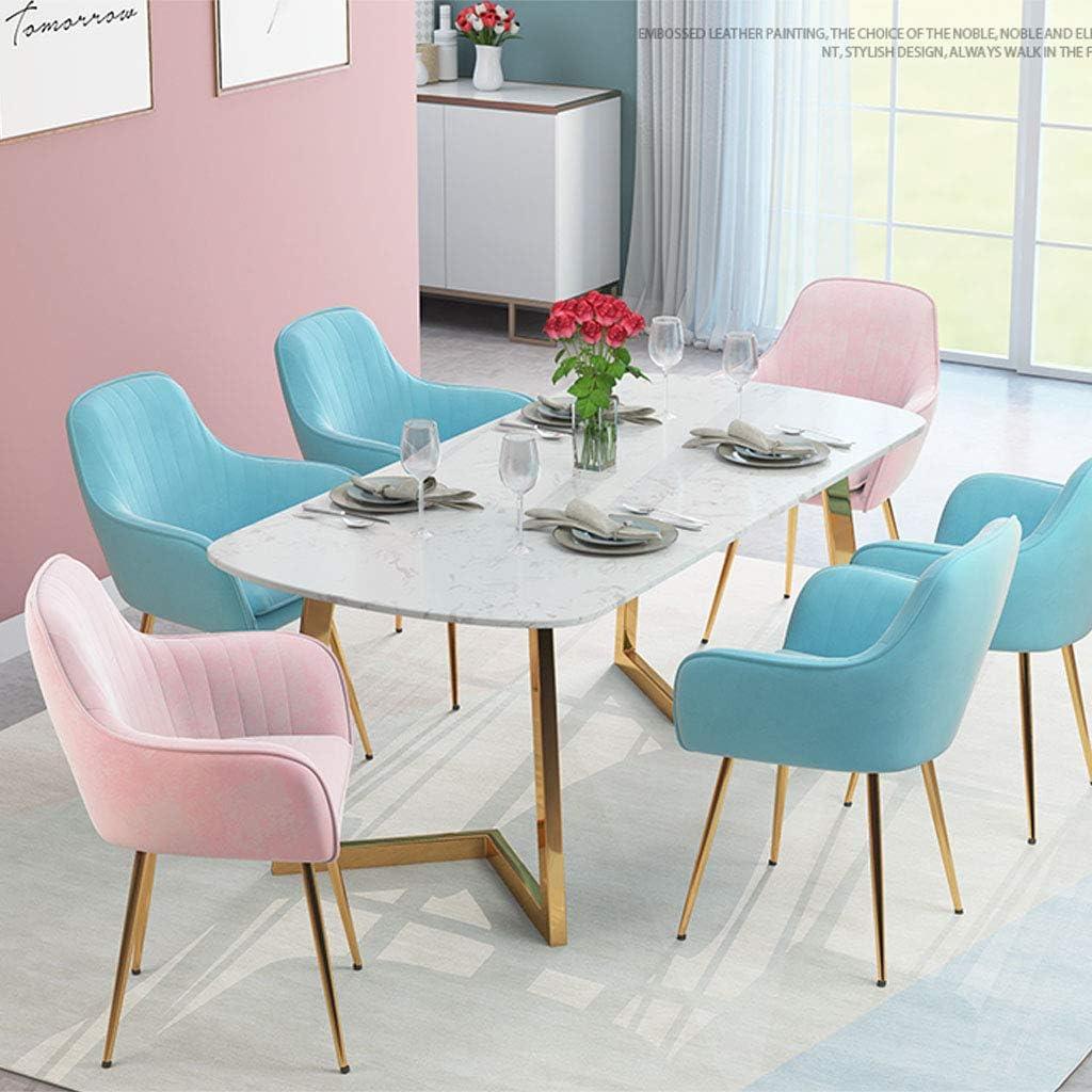 Amrai Chaise de Salle à Manger avec siège Ergonomique, Pieds en métal doré, sièges latéraux pour Salon de café, Salle de séjour, 34