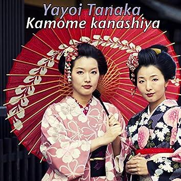 Kamome Kanashiya