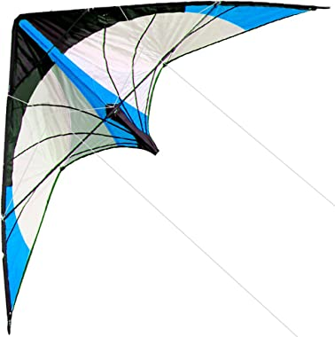 HENGDA KITE-Upgrade Star Rhyme 48 Inch Dual Line Stunt Kite for Kids and Adults,Outdoor Sports,Beach and Fun Sport Kite,Handl