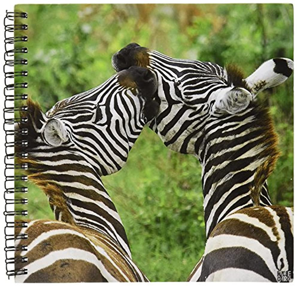 3dRose db_9864_1 Common Zebra Lake Nakuru Kenya Africa Drawing Book, 8 by 8-Inch