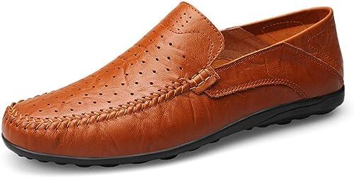 Shuo lan hu wai Les Mocassins Occasionnels Doux de Conception de Mode des Hommes Glissent sur la Conduite Mocassin de Mocassin,Chaussures de Cricket (Couleur   rouge marron Hollow Vamp, Taille   43 EU)
