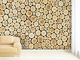 Fototapete Wood Stump - weitere Größen und Materialien wählbar - DEUTSCHE Profi QUALITÄT von Trendwände