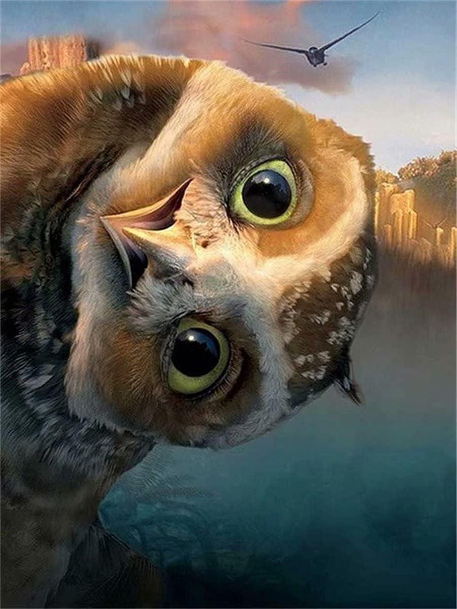 5D Diamond Painting Accessories owl Square Low price Mosa Philadelphia Mall