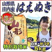 【新米・当日精米】 令和2年 山形県 庄内産 はえぬき 一等米 玄米 5kg (特別栽培米)