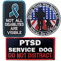 Not All Disabilities are Visible Vests/Harnesses Service Dog Military Tactical Morale Badge エンブレム 刺繍ファスナー フックループパッチ 犬 ペット用 p-233