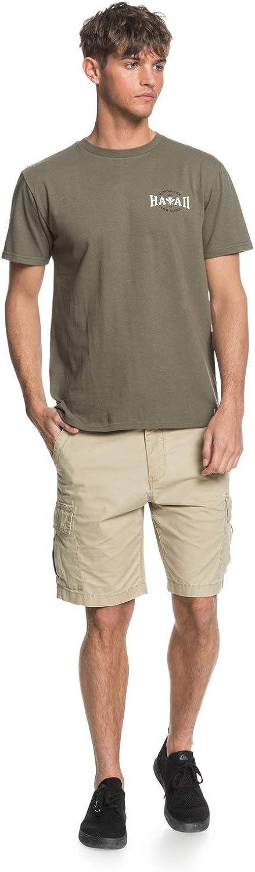 Quiksilver Mens Hi Chambers Mt0 Tee: Clothing