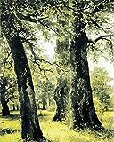 SiJOO Scenario Gigante della Foresta di Alberi Pittura Digitale Fai-da-Te su Tela Moderna Digitale Arte Tela Pittura Unica Decorazione della Stanza Regalo 40x50cm