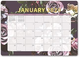 Orange Circle Studio 2020 Decorative Desk Blotter Calendar, Floral Expressions