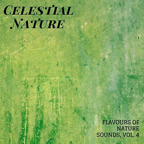 Rain Sound Studio, White Noise Meditation & 自然音