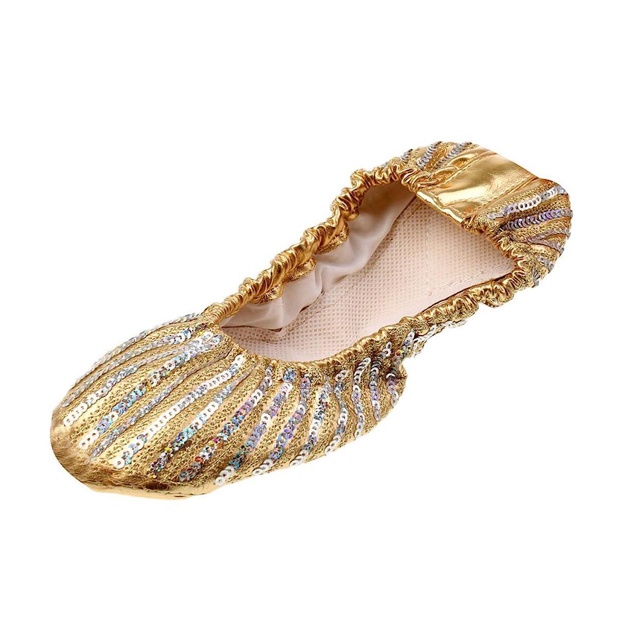 前者畝間柱Blesiya ダンスシューズ バレエシューズ 靴 シューズ フラットヒール 折り畳み可 快適 4サイズ選べる