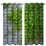 Boyouth Cortinas opacas con estampado digital de paredes grises y hojas verdes, cortinas y cortinas con ojales para sala de estar, dormitorio, 2 paneles, 53 x 96 pulgadas