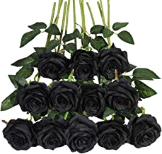 Mejor Ramo De Rosas Negras Y Azules de 2020 - Mejor valorados y revisados