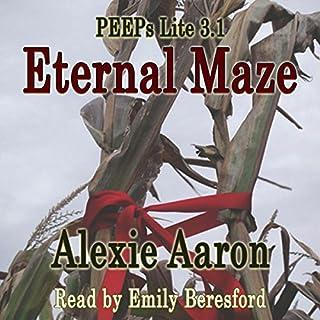 Eternal Maze cover art