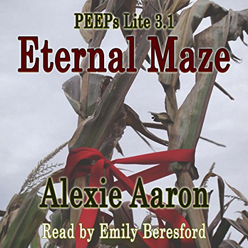 Eternal Maze audiobook cover art