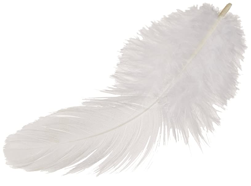 Zucker B103-W Rooster Plumage Feather, 0.04-Ounce, White