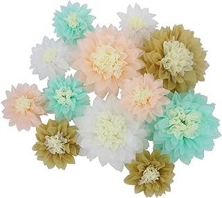 Mybbshower Handcrafted Assorted Paper Flower for Wedding Backdrop Engagement Bridal Shower Decoration Pack of 12