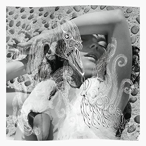 Hardymedicalsupplies Cover Album Vespertine Black White Music Bjork and Swan Home Decor Wandkunst drucken Poster !