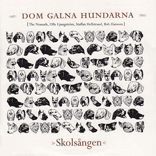 Dom galna hundarna feat. The Nomads, Olle Ljungström, Staffan Hellstrand & Bob Hansson