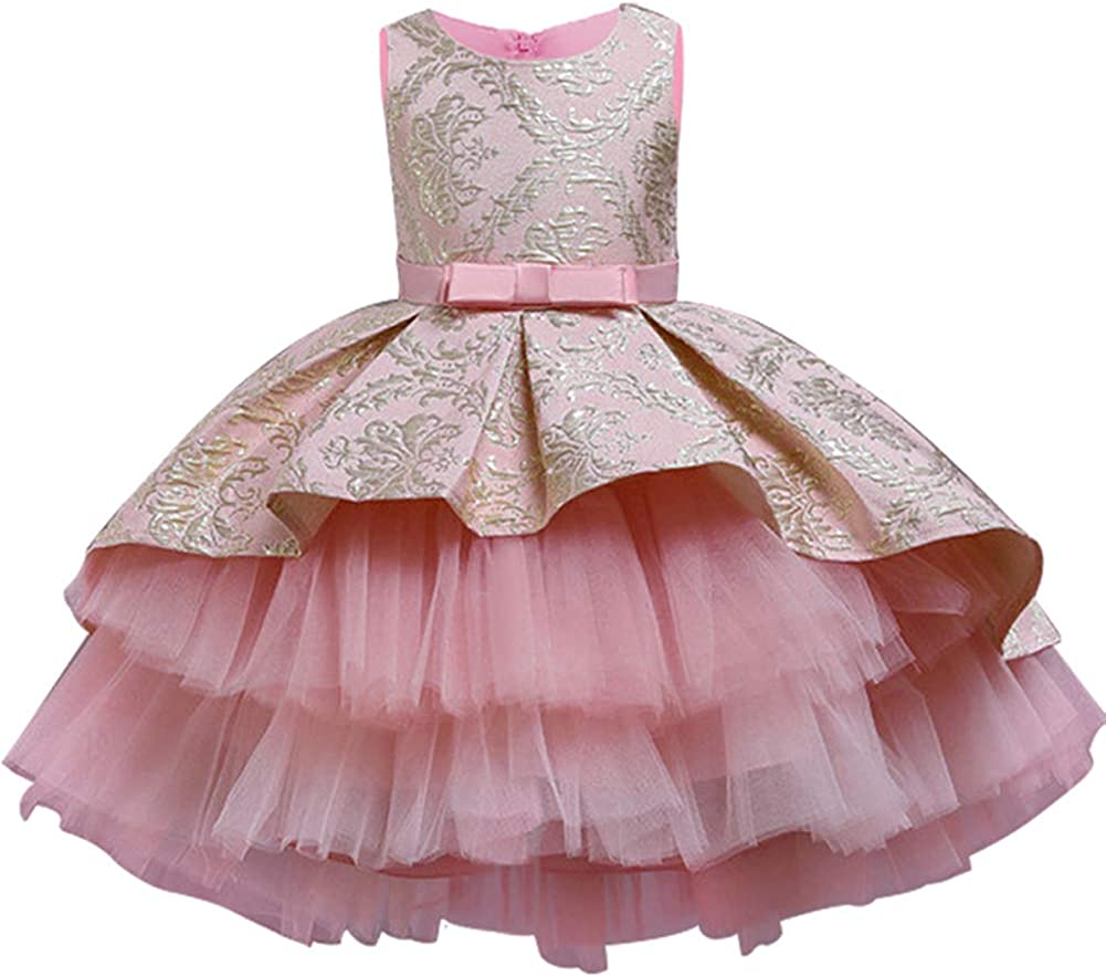 LZH Baby Girls Birthday Special Princess Lace Dresses for Party Wedding Special Occasion Dresses for Girls