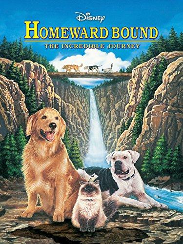 Homeward Bound: The Incredible J...
