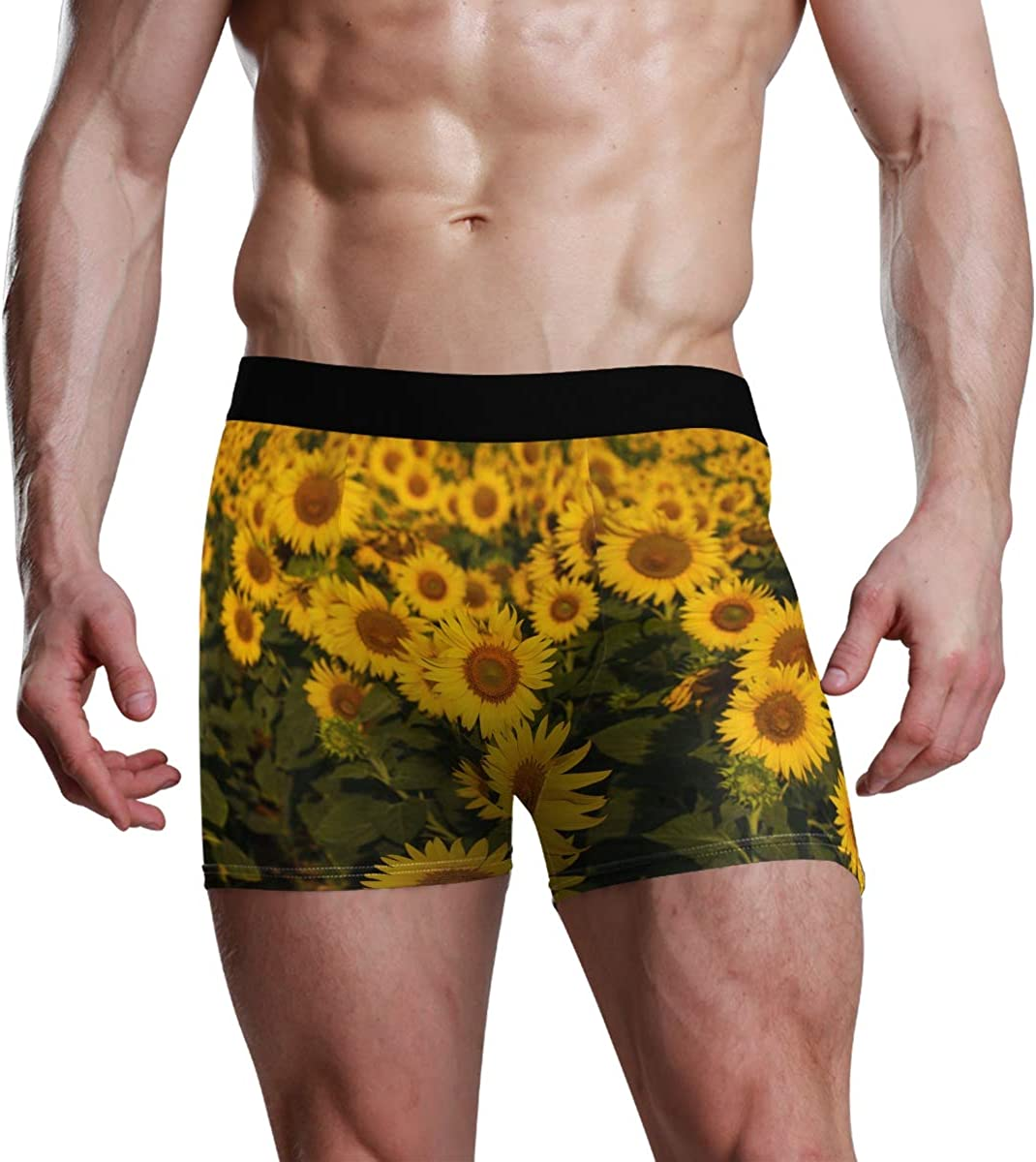 Mens Underwear Boxers Sunflower Fields are Blooming The Morning ComfortSoft Boxer Briefs Breathable Bikini