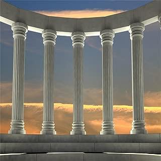 OFILA Ancient Greek Backdrop 10x10ft Marble Pillars Photography Background Roman Empire Architecture Civilisation Culture Ancient Ruins Temple Historical Building Archaeological Research Shoots Prop