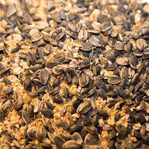 Karner Bio Wildvogelfutter, Streufutter im 20 Sack, Sonnenblumenkerne-Maismischung