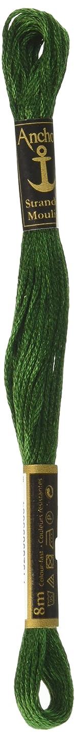 Anchor Six Strand Embroidery Floss 8.75 Yards-Grass Green Ultra Dark 12 per Box