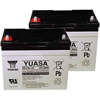 : Yuasa Batterie plomb AGM REC36 12 12V 36Ah F M5