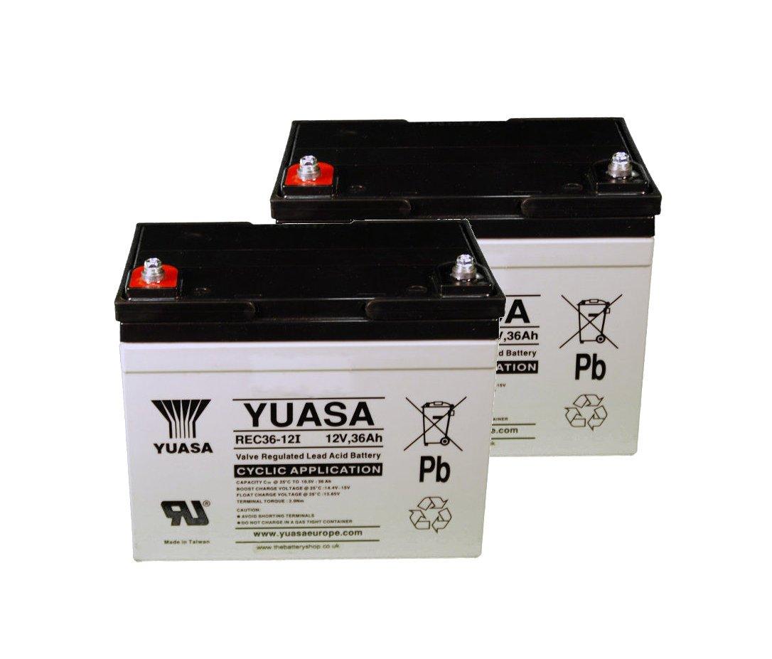 Yuasa - Batería de 12V 36Ah YUASA REC36-12í - REC36-12I
