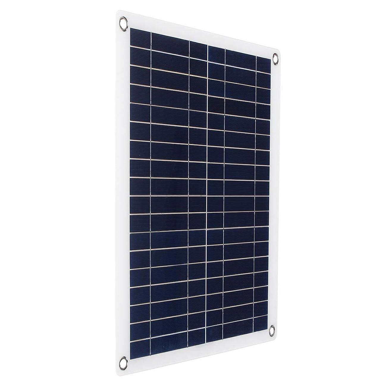 巨人のスコア寛容なソーラーパネル ボード30Wソーラーパネルセミフレキシブルなポータブルカーや船舶の緊急充電会を緊急充電 太陽光発電システム (Color : Black, Size : 30w)