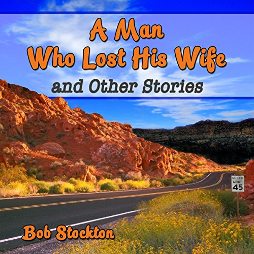 A Man Who Lost His Wife and Other Stories audiobook cover art