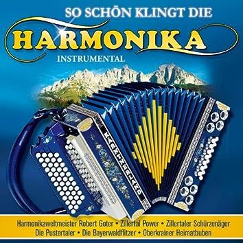 So schön klingt die Harmonika
