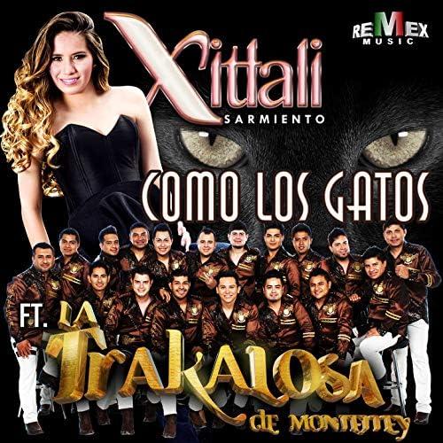 Xitlali Sarmiento feat. Edwin Luna y La Trakalosa de Monterrey