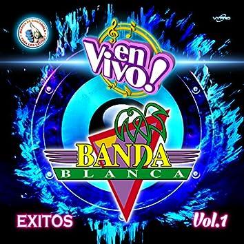 Exitos Vol. 1. Música de Guatemala para los Latinos (En Vivo)