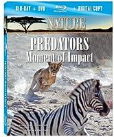 Nature: Predators: Moment of Impact [Blu-ray] [Import]
