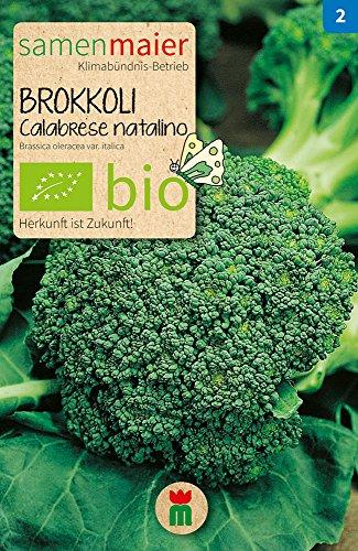 Preisvergleich Produktbild Samen Maier 813 Brokkoli Calabrese natalino (Bio-Brokkolisamen)