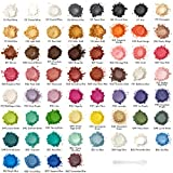 Arteza Polvos de mica, colorante para jabones, pigmentos para resina epoxi, 60...