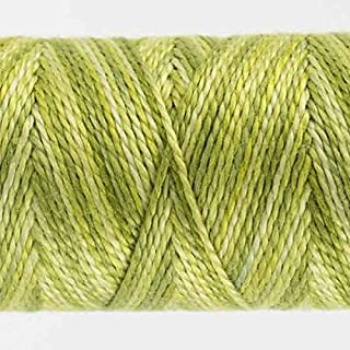 WonderFil Specialty Threads Sue Spargo Eleganza 2-ply #8 Perle Cotton Variegated, Inchworm #12