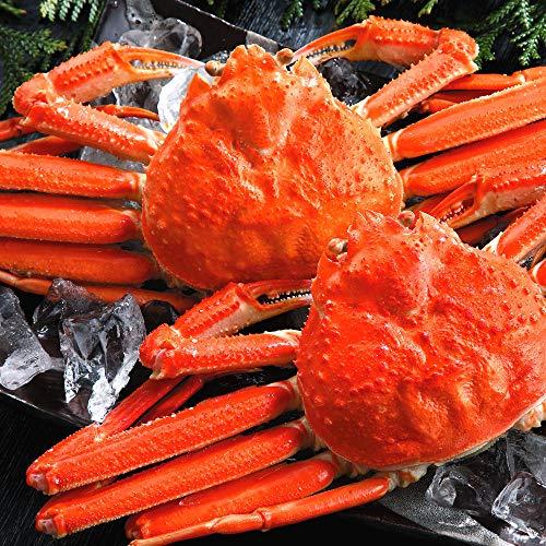 さっぽろ朝市 ズワイガニ 姿 約1.6kg (800g× 2尾) 天然 ずわいがに姿 本ずわい蟹 特大
