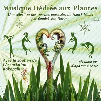Musique Dédiée Aux Plantes