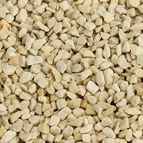 trendmarkt24 Deko Kies Creme 1000g | 1kg entspricht ca. 580 cm³ | Farbkies beige für Bastelideen | Tischdeko | Tischdekoration zum Befüllen von Glasgefäßen Vasen Teelichthalter 99101102