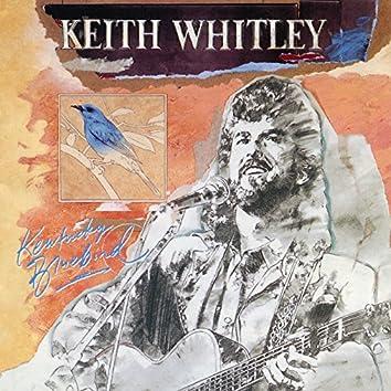Kentucky Bluebird