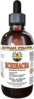 Echinacea Alcohol-FREE Liquid Extract, Organic Echinacea (Echinacea Purpurea) Dried Herb Glycerite 2 oz