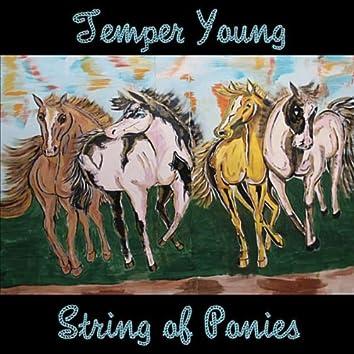 String of Ponies