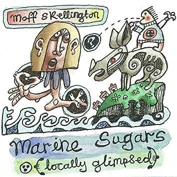 Marine Sugars (Locally Glimpsed)