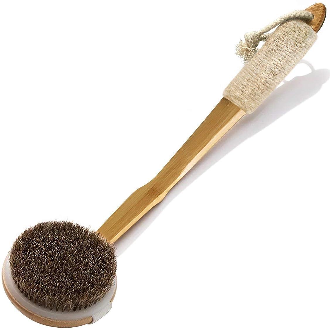 変な窒素国勢調査ボディブラシ 天然素材100% 馬毛 背中ブラシ 抗菌加工済み楠竹製 カーブしている長柄 滑り止め 取り外し可能なブラシ 角質除去 深く清潔 体洗いブラシ
