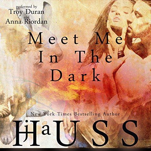 Meet Me in the Dark audiobook cover art
