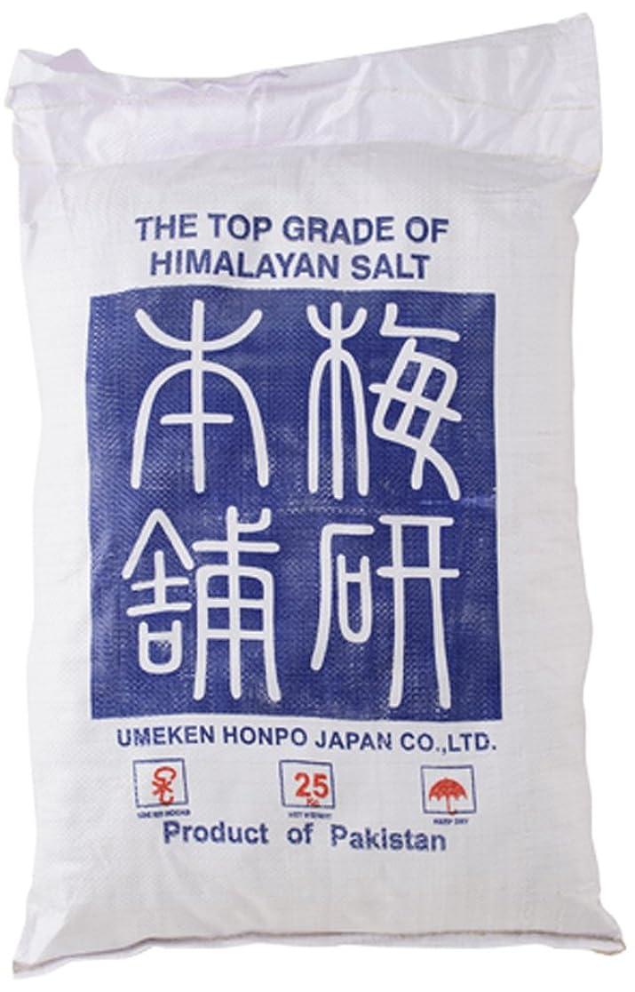 熟達ビジョン悩みヒマラヤ岩塩 バスソルト ホワイト ブロック 25kg