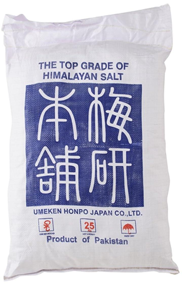 カテゴリー郵便物警告ヒマラヤ岩塩 バスソルト ピンク あら塩 25kg